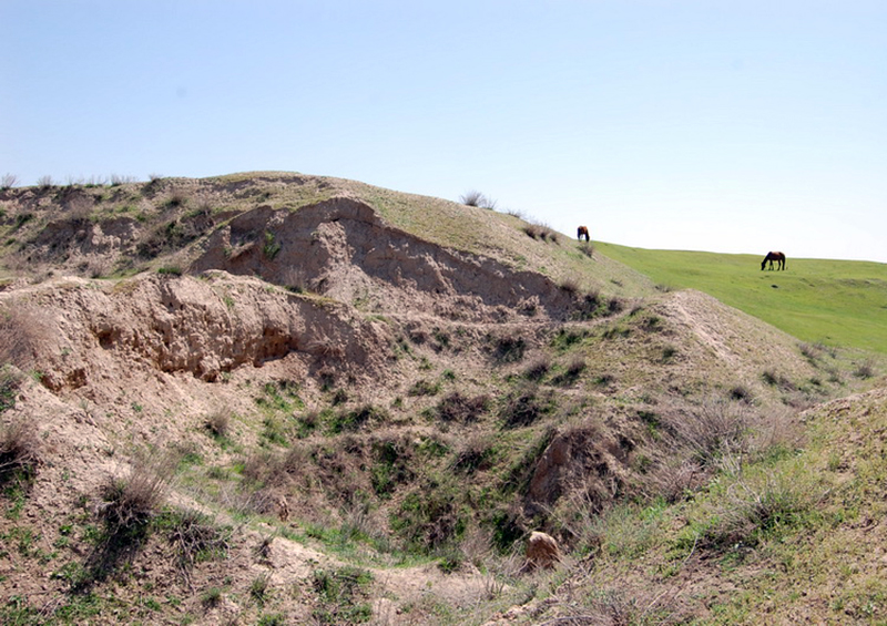 Ancient settlement of Kanka near Tashkent