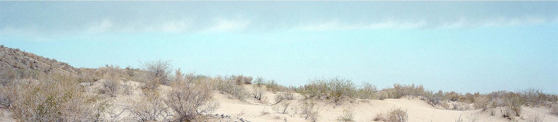 Aralkum Desert - 1