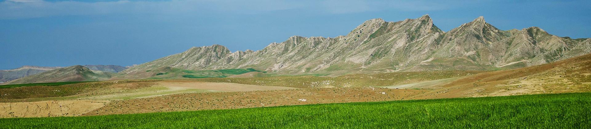 Mountains of Gazalkent (Economy) - 1