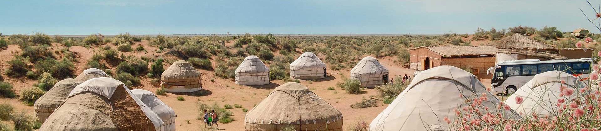 Yurt Camp near Aydar Lake - 1
